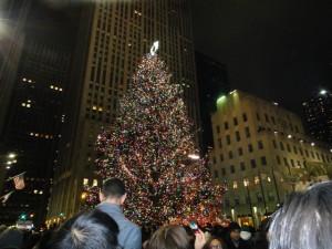 RFCB_クリスマスツリー9